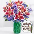 ProFlowers - Mother's Day Spectacular + Blue Mason Jar for $35 w/ Free Shipping
