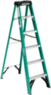 Werner 6 Ft. Fiberglass Step Ladder