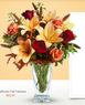 Teleflora - Bouquets Starting at $29.99