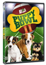 Puppy Bowl II DVD