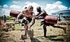 Colorado Spartan Sprint Race Coupons Colorado Springs, Colorado Deals