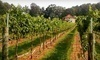 Morgan Ridge Vineyards Coupons Gold Hill, North Carolina Deals