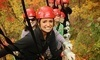 North Georgia Canopy Tours Coupons Lula, Georgia Deals