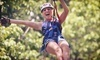 Eagle Falls Ranch Zipline Adventures Coupons Eminence, Missouri Deals