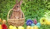 Easter Bunny Tea Coupons Middletown, Delaware Deals