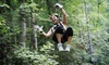Ocoee River Basin Canopy Tour Coupons Ducktown, Tennessee Deals