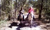 Makin Tracks Trail Rides Coupons Fort McCoy, Florida Deals