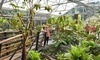 Rhododendron Species Botanical Garden Coupons Federal Way, Washington Deals