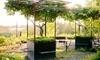 Garden Vineyards Coupons Hillsboro, Oregon Deals