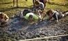 Xtreme Mud Warrior Coupons New Smyrna Beach, Florida Deals