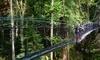 UBC Botanical Garden Coupons Vancouver, British Columbia Deals