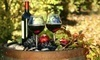Spring Wine Festival Coupons