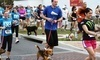The Continuum 5K-9 Coupons