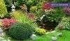 Maidstone Tree Farm & Garden Centre Coupons