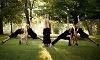 Bikram Yoga St. Louis Coupons