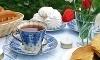 The Garden Tea Room - Westcliffe Coupons