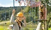 Thrillsville Aerial Adventure Park Coupons