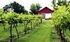 Harpors Vineyard Coupons