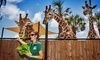 Naples Zoo at Caribbean Gardens Coupons