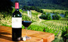 Wine Up! Wine Merchants Coupons Portland, Oregon Deals