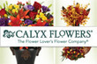 Calyx Flowers - November 2012 Coupons Kissimmee, FL Deals