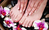 Hair and Nails by Christopher Anthony Coupons Orlando, Florida Deals