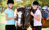 Dunwyn Equestrian Centre Coupons Erin, Ontario Deals