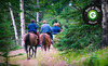 Breckenridge Stables Coupons Breckenridge, Colorado Deals