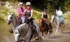 Cypress Trails Equestrian Center Coupons Humble, Texas Deals